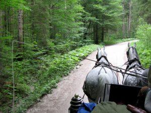 Coaching in Bavaria Tour